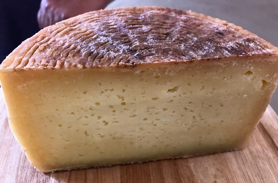 pecorino camasciano slow food 570
