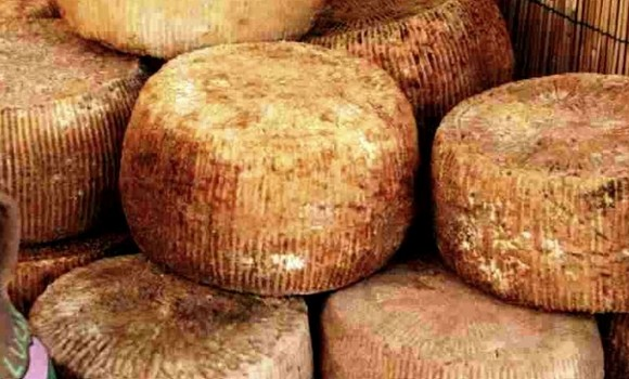 Pecorino di filiano dop580a