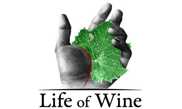 life of wine firenze 2014