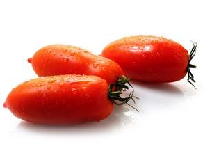 pomodoro perino